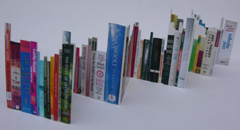 Remarkable Bookshelf by Cally Trench