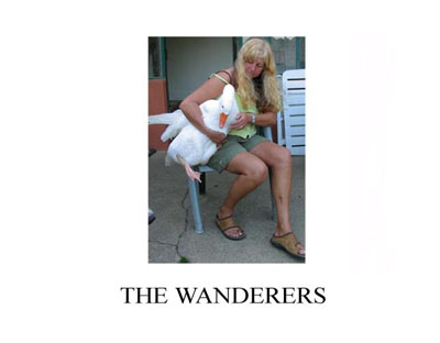 The Wanderers by Penny Matheson